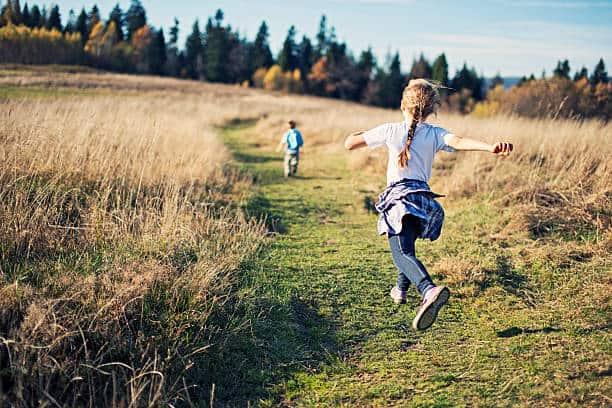 Importance Of Nature Walk For Preschoolers What You Need To Know