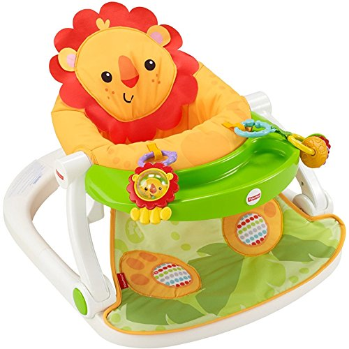 Fisher-Price FPR21