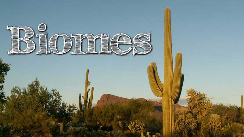Biomes of the World for Kids
